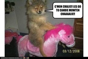 C'MON CHALIE!!