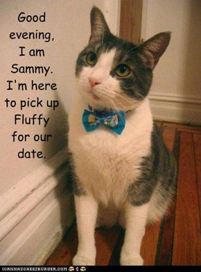 Good  evening, I am  Sammy. I'm here  to pick up  Fluffy for our  date.
