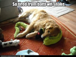 So tired frum battl wif snake.