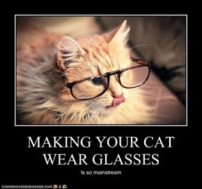 MAKING YOUR CAT WEAR GLASSES