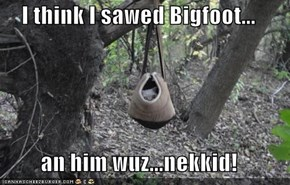 I think I sawed Bigfoot...  an him wuz...nekkid!