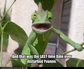 And that was the LAST time Dale ever disturbed Yvonne.