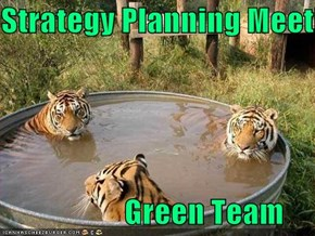 Strategy Planning Meeting                      Green Team