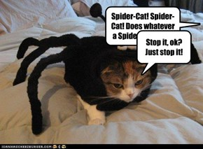 Spider-Cat! Spider-Cat! Does whatever a Spider-Cat does!