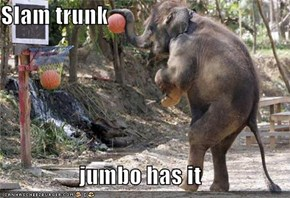Slam trunk  jumbo has it