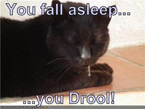 You fall asleep...  ...you Drool!