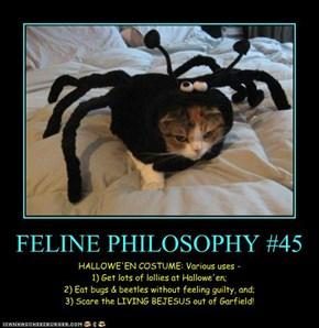 FELINE PHILOSOPHY #45
