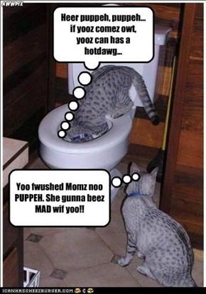 Yoo fwushed Momz noo PUPPEH. She gunna beez MAD wif yoo!!