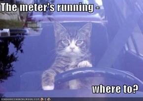The meter's running -   where to?