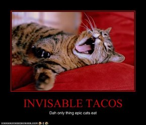 INVISABLE TACOS