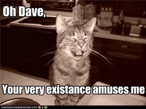 Oh Dave,