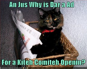 An Jus Why is Dar a Ad   For a Kiteh Comiteh Openin?