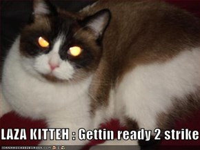 LAZA KITTEH : Gettin ready 2 strike