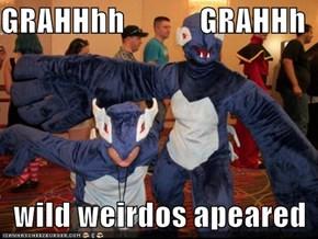 GRAHHhh            GRAHHh    wild weirdos apeared
