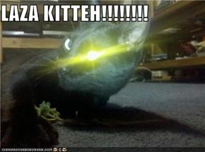 LAZA KITTEH!!!!!!!!