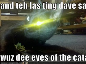 and teh las ting dave sawd  wuz dee eyes of the catalisk