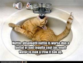 Nuttin, absolootli nuttin is wurse dan a bottul of bad tequila cept jus enuff watur to mak u trow it bak up.