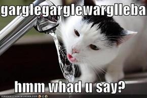 garglegarglewargllebargle  hmm whad u say?