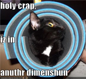 holy crap, iz in anuthr dimenshun