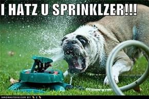 Sprinklerz Derp You Too, Derp!