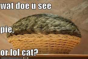 wat doe u see pie, or lol cat?