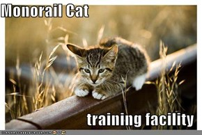 Monorail Cat  training facility
