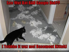 See Wut Dat BAD Googie Did??    ( Tehhhe it wuz me! Basement Kitteh)