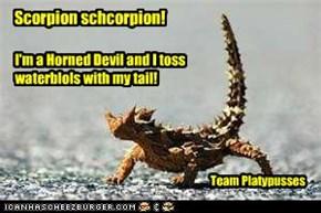 Scorpion schcorpion!