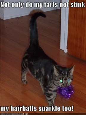 Not only do my farts not stink  my hairballs sparkle too!