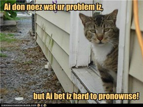 Ai don noez wat ur problem iz,