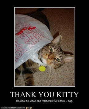 THANK YOU KITTY