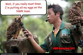 Well, if you really must know. I'm putting all my eggs on the NWR team.