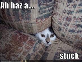 Ah haz a....  stuck
