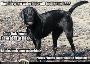 Dey fink a few waterblolz will bodder meh???