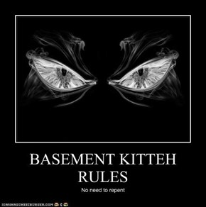 BASEMENT KITTEH RULES