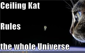 Ceiling Kat Rules the whole Universe