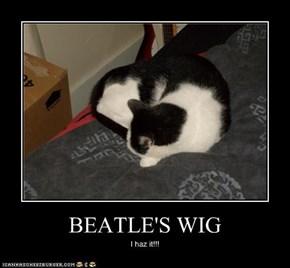 BEATLE'S WIG