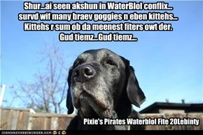 Shur...ai seen akshun in WaterBlol conflix... survd wif many braev goggies n eben kittehs... Kittehs r sum ob da meenest fiters owt der. Gud tiemz...Gud tiemz...
