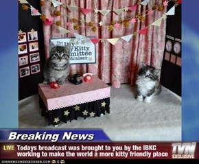 Breaking News - Todays broadcast was brought to you by the IBKC working to make the world a more kitty friendly place