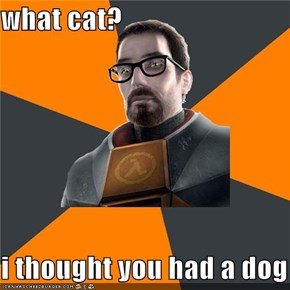what cat?  i thought you had a dog