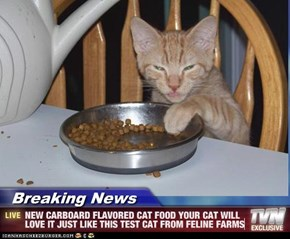 Breaking News - NEW CARBOARD FLAVORED CAT FOOD YOUR CAT WILL LOVE IT JUST LIKE THIS TEST CAT FROM FELINE FARMS