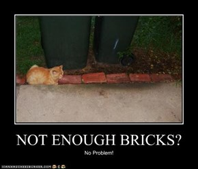 NOT ENOUGH BRICKS?