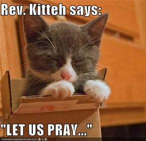 "Rev. Kitteh says:  ""LET US PRAY..."""