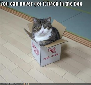 You can never get it back in the box