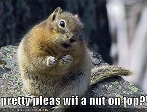 pretty pleas wif a nut on top?!
