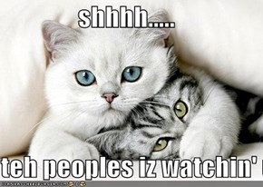 shhhh.....  teh peoples iz watchin' us