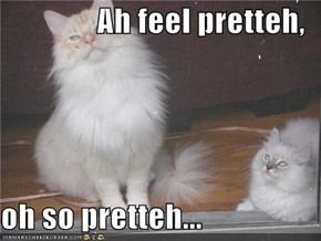 Ah feel pretteh,  oh so pretteh...