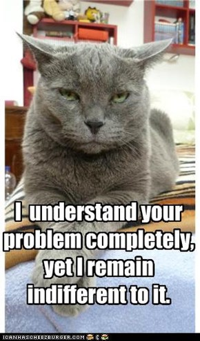 I  understand your problem completely, yet I remain indifferent to it.