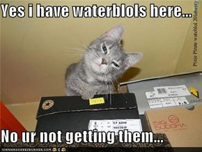 Yes i have waterblols here...  No ur not getting them...