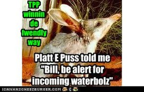 Bilby Early Warning System